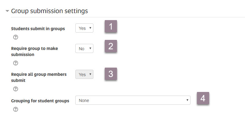 Assignment settings_group submission settings