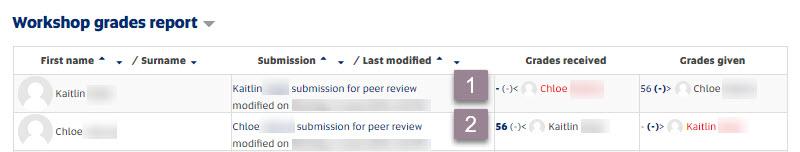 Workshop_grades report