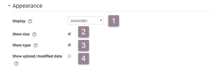 File_appearance settings