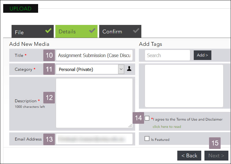 Screenshot showing the details section of the media upload.