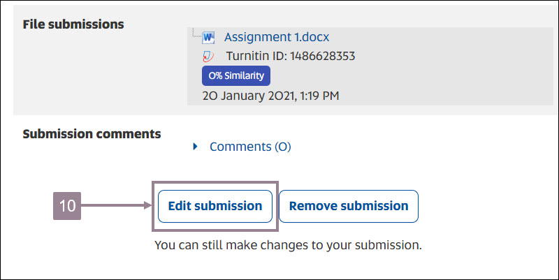 screenshot showing the edit submission button.
