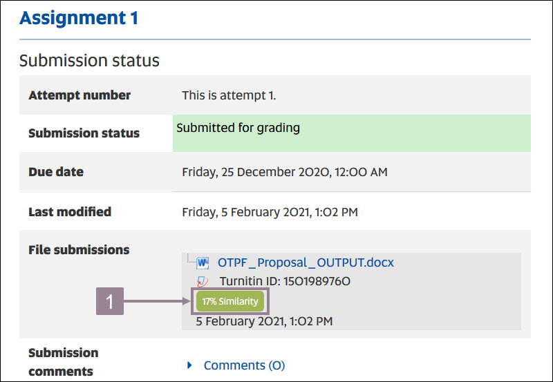 Screenshot showing the submission status and the similarity button.