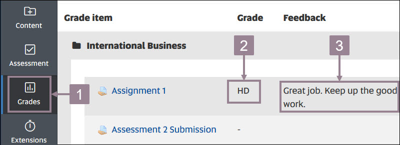 Screenshot showing the grades icon in the left hand navigation and the grade overview with feedback.