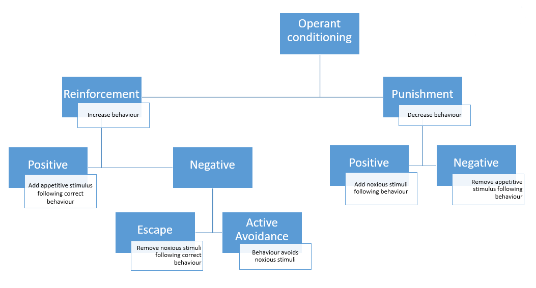Behaviourism diagram
