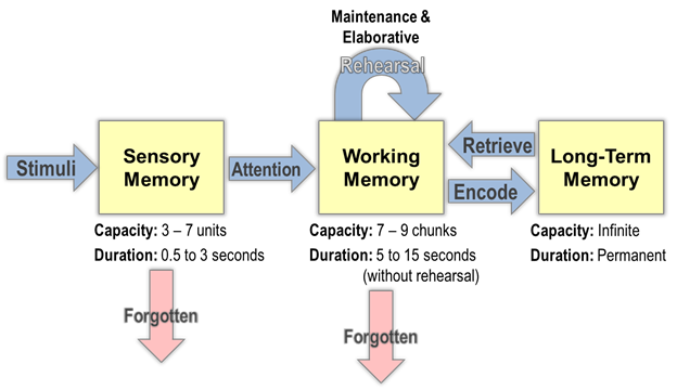 information processing model [Source: http://dataworks-ed.com/the-information-processing-model/]